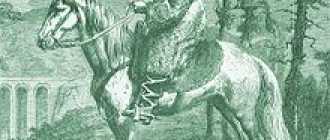 Лошади породы Мареммано: характеристика, фото, описание