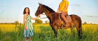 Прокат лошадей в Саранске