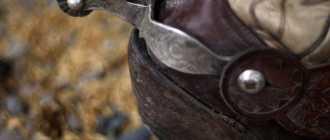 Шпора и хлыст для лошади: описание, применение, фото и видео