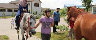 Приокат лошадей в Грозном