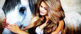 Самая умная лошадь в мире: в истории, породы и клички, фото, Ганс