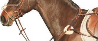 Как сделать узду для лошади своими руками: строение, инструменты, материалы