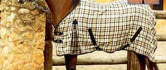 Как сделать попону для лошади: виды, материал, размеры, пошив